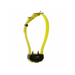 Collier supplémentaire sangle jaune pour ensemble de dressage Canicom 200, 200 First, 800, 1500 Pro et 1500