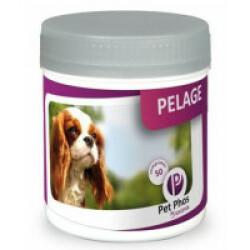 Complément alimentaire Pet-Phos Pelage pour chien boîte 450 comprimés