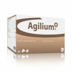 Complément alimentaire articulations pour chien Agilium + Ceva Boîte de 30 comprimés