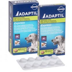 Comprimé Adaptil pour la réduction du stress chez le chien boite de 10 cps