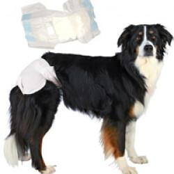 Couche culotte jetable blanche pour incontinence pour chienne paquet de 12 couches T00