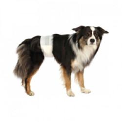 Couche culotte jetable pour fuite urinaire chien mâle Trixie - Lot de 12