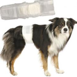 Couche incontinence jetable pour fuite urinaire du chien mâle S-M (paquet de 12 couches)