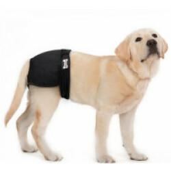 Couche lavable noire pour chien femelle taille XS
