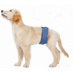 Couche lavable noire pour chien mâle taille XS