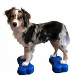 Coussin travail de l'équilibre pour chien Fitbone Mini lot de 2 - Coloris bleu