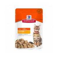 Croquettes pour chat adulte Hill's Science Plan santé et équilibre poulet 12 sachets de 85 g