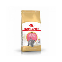 Croquettes pour chaton Royal Canin British Shorthair Kitten