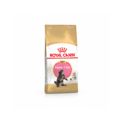 Croquettes pour chaton Royal Canin Maine Coon Kitten Sac 4 kg