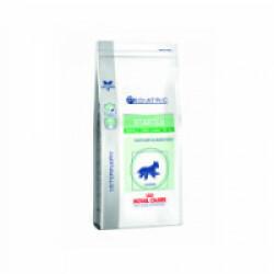 Croquettes pour chien de petite race Veterinary Care Pediatric Starter Royal Canin Sac 1,5 kg