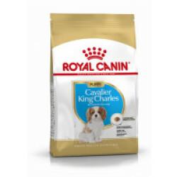 Croquettes pour chiot et junior race Cavalier King Charles Royal Canin Sac 1,5 kg