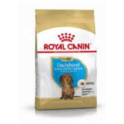 Croquettes pour chien junior race Teckel Royal Canin Nutrition Sac 1,5 kg