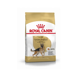 Croquettes Royal Canin Berger Allemand Adulte