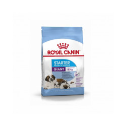 Croquettes Royal Canin Giant Starter Mother & Babydog