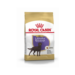Croquettes Royal Canin Labrador Retriever Sterilised Adulte