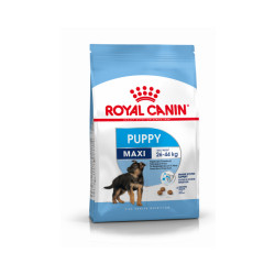 Croquettes Royal Canin Maxi Puppy Junior