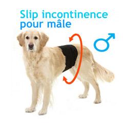 Culotte d'incontinence et fuite urinaire pour chien mâle Taille 0 M