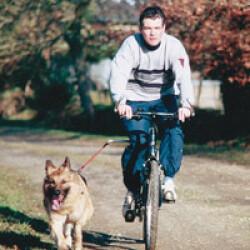 Sandow simple de rechange pour attache à vélo pour chien Cynobike ®