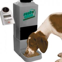Distributeur automatique et programmable de croquettes pour chiot et petit chien