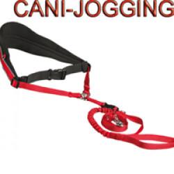 Ensemble ceinture et sangle jogging pour chien moyen et grand