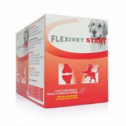 Flexivet Start pour chien et chat souffrant d'arthrite ou d'arthrose Boite de 200 cps