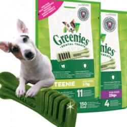 Greenies os à mâcher pour chien de 8 à 11 kg - 10 os (sachet de 170 g )