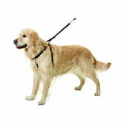 Harnais d'éducation Easy Walker pour chiens Flamingo Taille S Longueur 22-32 cm