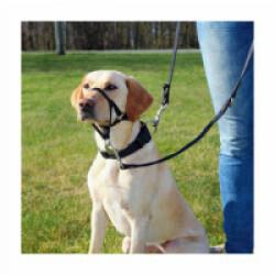 Harnais de dressage pour chien Top Trainer Trixie noir Taille L Longueur 31 cm