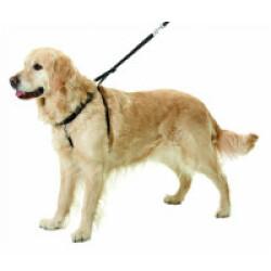 Harnais d'éducation pour chiens Easy Walker