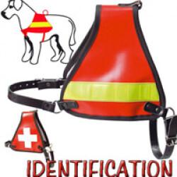 Harnais d'identification rouge et bande jaune pour chien