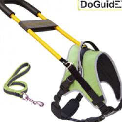 Kit Doguide™ Cadre droit T1 (harnais Kn'1 Active Start + cadre + laisse Gommelaisse verte 1m)