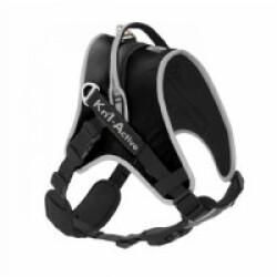 Harnais Kn'1 Active Start pour chien actif T2 Noir