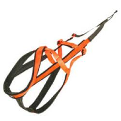 Harnais Speed Race Kn'1 - Taille 1 (Orange)