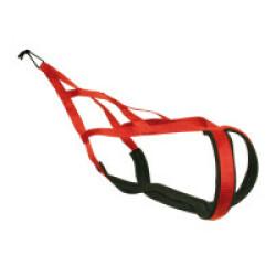 Harnais X-Back Rouge pour Canicross ou Traîneau - T45