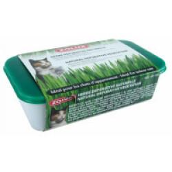 Herbe naturelle dépurative pour chat Zolux