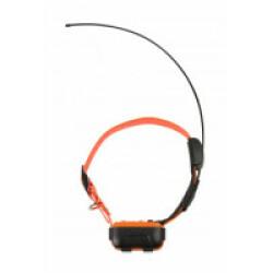 Collier supplémentaire pour Canicom GPS