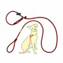 Laisse d'éducation CoolDog pour chien Coloris Rouge Taille 1
