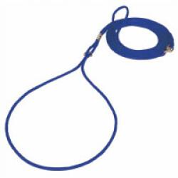 Laisse de présentation pour chien T2 bleue ø 5 mm