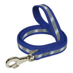 Laisse fluorescente en nylon pour chien - coloris bleu