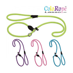 Laisse lasso jaune en corde nylon ColoRope pour chien Ø 10 mm