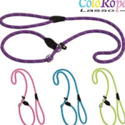 Laisse lasso violette en corde nylon ColoRope pour chien Ø 10 mm
