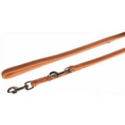 Laisse pour chien Entrainement Aurum Flamingo Or & Beige Long 2 m larg 1,4 cm