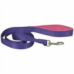 Laisse sangle violette en nylon pour chien avec poignée confort Chapuis Sellerie
