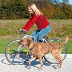 Laisse speciale vélo et jogging pour chien