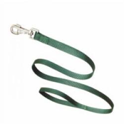 Laisse unie verte nylon pour chien T3 1,10 m Sangle 20 mm