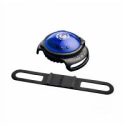 Lampe de sécurité Orbiloc Dog Dual collier lumineux pour chien Bleu