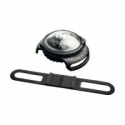 Lampe de sécurité Orbiloc Dog Dual collier lumineux pour chien Blanc