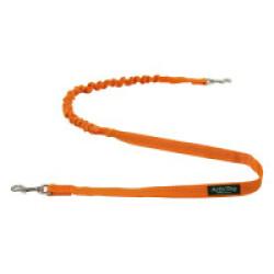 Ligne amortie ActivDog avec 2 mousquetons pour canicross - Orange