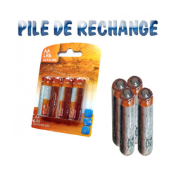 Lot de 4 Piles Alcaline 1.5 volts LR06