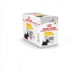 Mousse pour chien Dermacomfort Royal Canin - 12 sachets fraîcheur 85 g